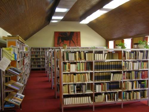 Könyvtár felnőtt